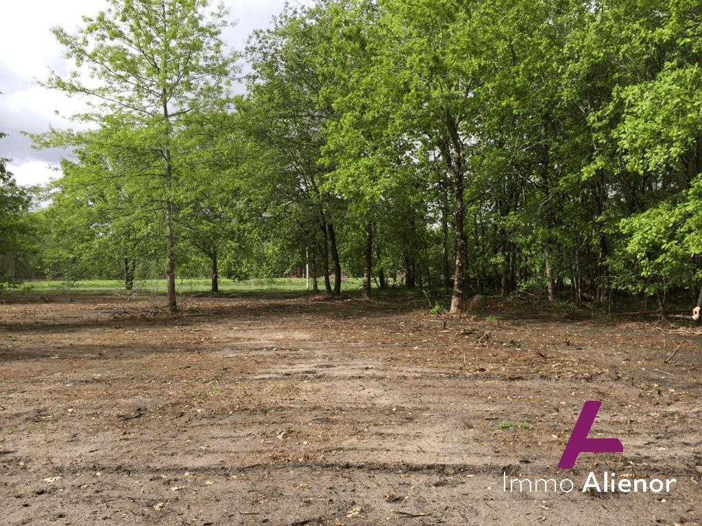 Terrain à bâtir à Saugnac et Muret