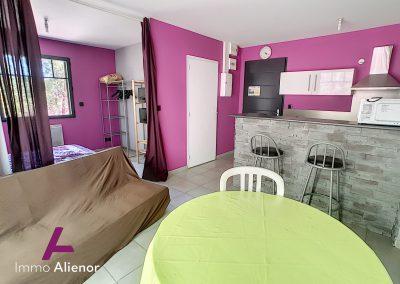 Ensemble immobilier comprenant une maison et 4 appartements à Lugos 16
