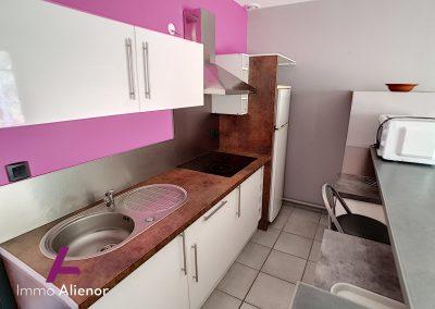 Ensemble immobilier comprenant une maison et 4 appartements à Lugos 17