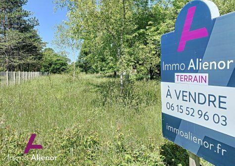 Terrain de 3000 m² à Saint-Paul-En-Born
