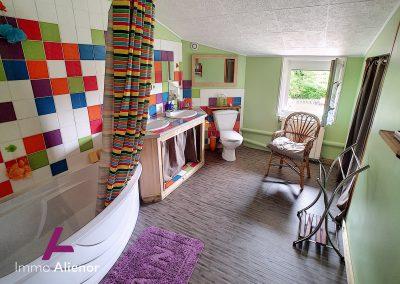 Maison de 235 m² à Saint Symphorien 17